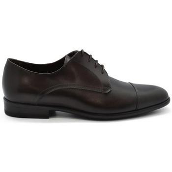 Chaussures Homme Derbies & Richelieu Alberto  Marron