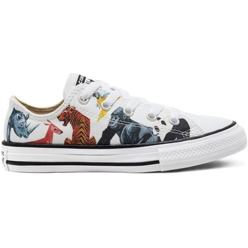 Chaussures Fille Baskets basses Converse CHUCK TAYLOR ALL STAR OX Multicolore