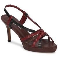 Chaussures Femme Sandales et Nu-pieds Stéphane Kelian PRISCILLE Marron / Rouge
