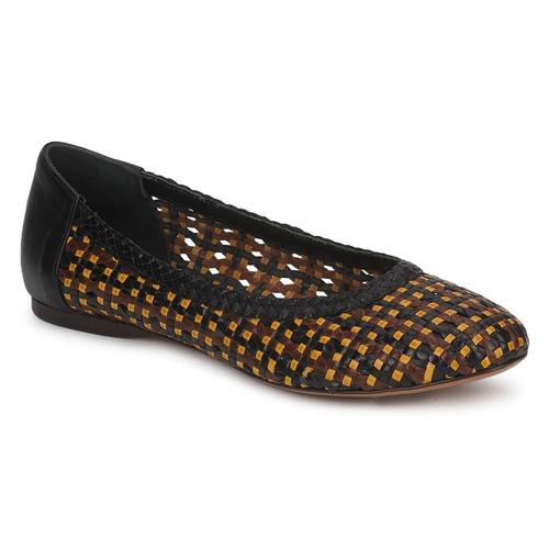 Chaussures Femme Ballerines / babies Stéphane Kelian WHITNEY Marron / Noir