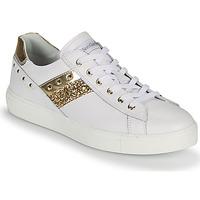 Chaussures Femme Baskets basses NeroGiardini DRILLA Blanc / Doré