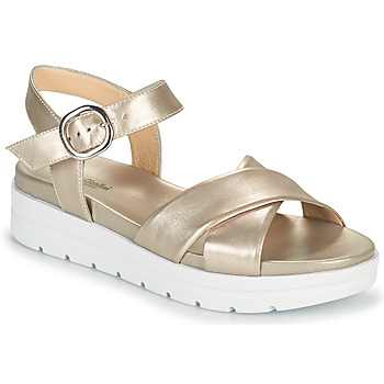 Chaussures Femme Sandales et Nu-pieds NeroGiardini LONELESS Doré