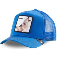 Accessoires textile Homme Casquettes Goorin Bros STRONG bleu