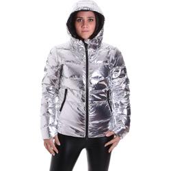 Vêtements Femme Doudounes Refrigiwear RW5W09000NY0188 Gris