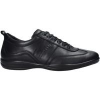 Chaussures Homme Baskets mode Docksteps DSM105001 Noir