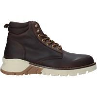 Chaussures Homme Sandales et Nu-pieds Docksteps DSM105901 Marron