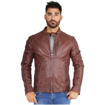 Vêtements Homme Vestes en cuir / synthétiques Oakwood Blouson  Agency cuir ref_39660 Whisky Noir