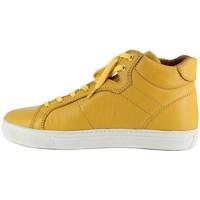 Chaussures Homme Baskets montantes Peter Blade MAZATLAND jaune Jaune