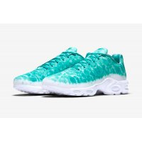 Chaussures Baskets basses Nike Air Max Plus Gpx Swimming Pool Mineral Teal/White
