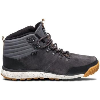 Chaussures Homme Chaussures de Skate Element DONNELLY LIGHT asphalt gum Gris