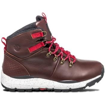 Chaussures Homme Chaussures de Skate Element MONDE wallnut Marron