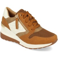 Chaussures Femme Baskets basses Ainy 9590 Camel