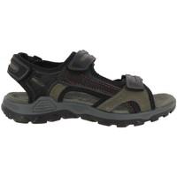 Chaussures Homme Sandales et Nu-pieds Rohde 5945 Noir