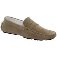 Chaussures Homme Mocassins Baxton Chaussure bateau  ref_bomends32956-taupe Marron
