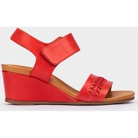 Chaussures Femme Sandales et Nu-pieds Pedro Miralles Trieste rouge