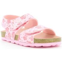 Chaussures Fille Sandales et Nu-pieds Kickers Summerkro ROSE