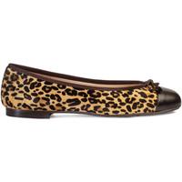 Chaussures Femme Ballerines / babies Paco Gil ROSALIA Marron