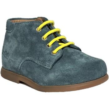Chaussures Garçon Boots Pom d'Api Nioupi Derby Velours Storm