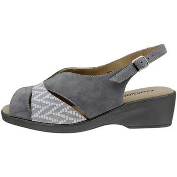 Chaussures Femme Sandales et Nu-pieds Gasymar 2554 Gris