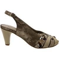 Chaussures Femme Sandales et Nu-pieds Gasymar 4253 Marrón