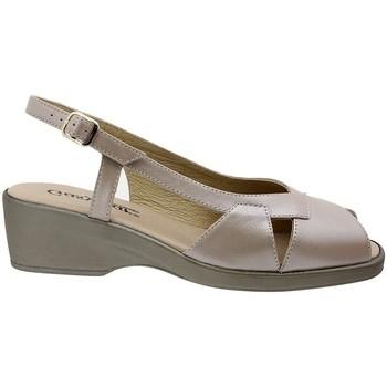 Chaussures Femme Sandales et Nu-pieds Gasymar 9576 Otros