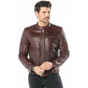 Vêtements Homme Vestes en cuir / synthétiques Daytona COBALT COW SEMI VEG BORDO Bordeaux