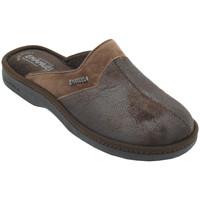 Chaussures Homme Sabots Emanuela AEMA1112marr marrone