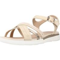 Chaussures Femme Sandales et Nu-pieds Geox D SANDAL HIVER Beige