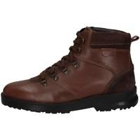Chaussures Homme Boots Wild Land PARKER MARRON