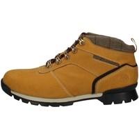 Chaussures Homme Boots Wild Land FOREST U JAUNE
