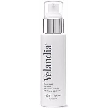 Beauté Femme Hydratants & nourrissants Velandia Face Cream Ácido Hialurónico Algas  50 ml