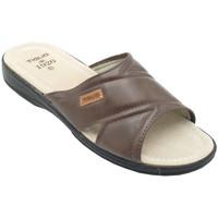 Chaussures Homme Mules Tiglio ATIGLIO801marr marrone
