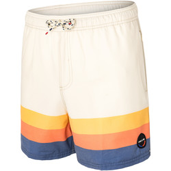 Vêtements Homme Shorts / Bermudas Pullin Short  GARY RAINBOW MULTICOLORE