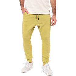 Vêtements Homme Pantalons de survêtement Pullin Bas de jogging  JOGGING LOOSE TIGER20 VERT