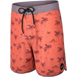 Vêtements Homme Shorts / Bermudas Pullin Short  MAT DUKE MARRON