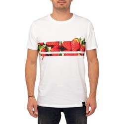 Vêtements Homme T-shirts & Polos Pullin T-shirt  LINEFRAISE BLANC