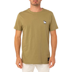 Vêtements Homme T-shirts & Polos Pullin T-shirt  PATCHPROBLAMA VERT
