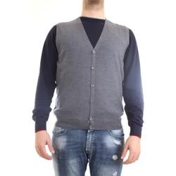 Vêtements Homme Gilets / Cardigans Gran Sasso 58182/14296 Gilet homme gris gris