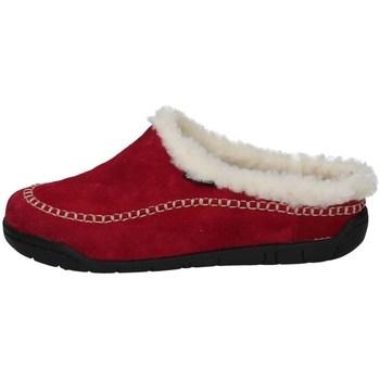 Chaussures Femme Chaussons Florance C50506-3 GERBERA
