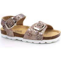 Chaussures Fille Sandales et Nu-pieds Billowy 6962C49 Rose
