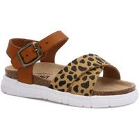 Chaussures Fille Sandales et Nu-pieds Billowy 7040C10 Marron