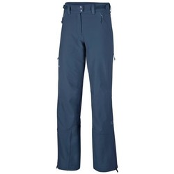 Vêtements Femme Chinos / Carrots Salewa Sesvenna Freak Dst W Bleu