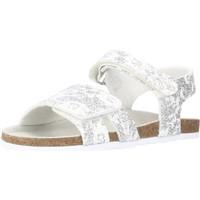 Chaussures Fille Sandales et Nu-pieds Chicco FIORE Argent