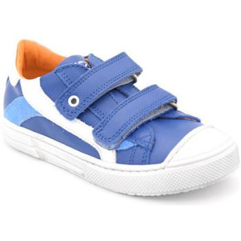 Chaussures Garçon Baskets basses Stones and Bones marro Bleu