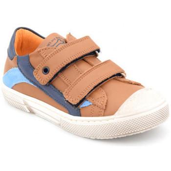 Chaussures Garçon Baskets basses Stones and Bones marro Marron