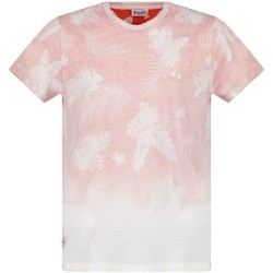 Vêtements Garçon T-shirts manches courtes Deeluxe T-Shirt MOGUAI Orange