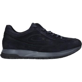 Chaussures Homme Baskets basses Alberto Guardiani AGM004800 Bleu