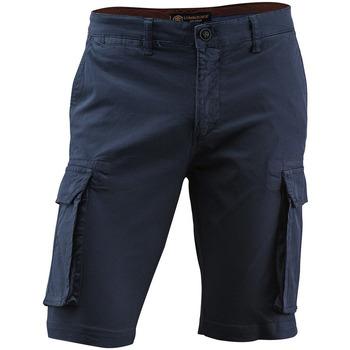 Vêtements Homme Shorts / Bermudas Lumberjack CM80747 005 602 Bleu