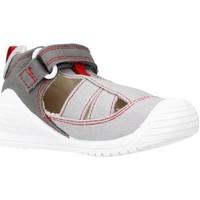 Chaussures Garçon Sandales et Nu-pieds Biomecanics 212222 Gris