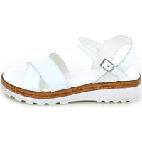 Chaussures Femme Sandales et Nu-pieds Andrea Pierago 3233.08_37 Blanc